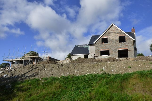 Thumbnail Detached house for sale in Llanrhaeadr Ym Mochnant, Oswestry