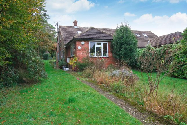 Thumbnail Semi-detached bungalow for sale in The Crescent, Chartham, Canterbury