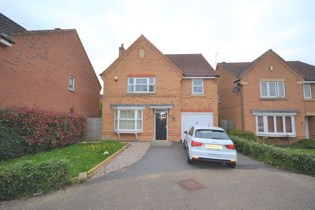 Thumbnail Detached house to rent in Kinchley Close, Bradgate Heights, Leicester