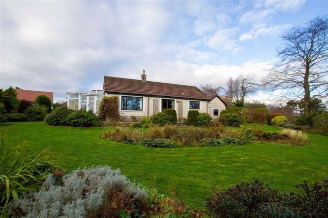 Thumbnail Detached bungalow for sale in Berwick Upon Tweed, Northumberland