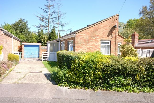 Thumbnail Bungalow for sale in Broomsquires Road, Bagshot
