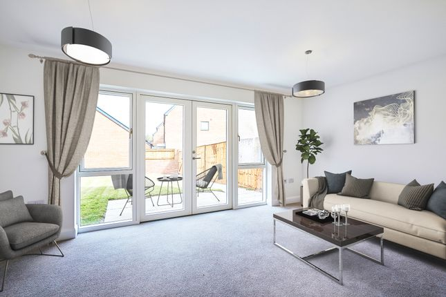 Thumbnail Detached house for sale in Neptune Drive, St Leonards