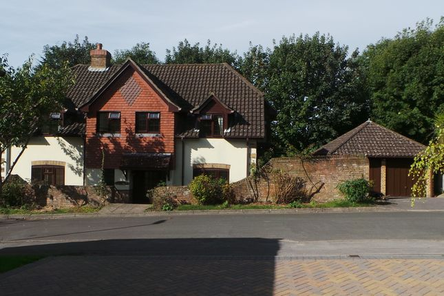 Thumbnail Detached house to rent in Tangle Wood, Fareham