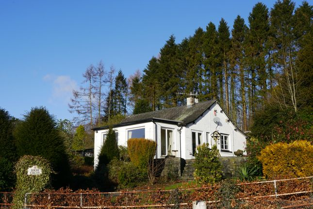 Thumbnail Detached bungalow for sale in High Cross, Hawkshead