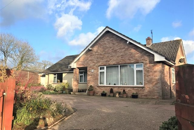 Thumbnail Detached bungalow for sale in Feniton, Honiton