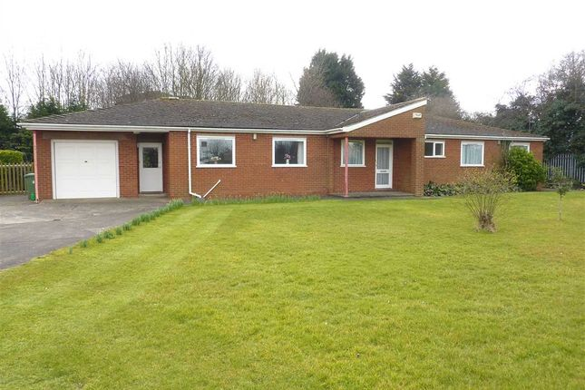 Thumbnail Detached bungalow to rent in Allerton Drive, Immingham