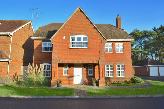 Thumbnail Detached house to rent in Night Owls, Newbury, Berkshire
