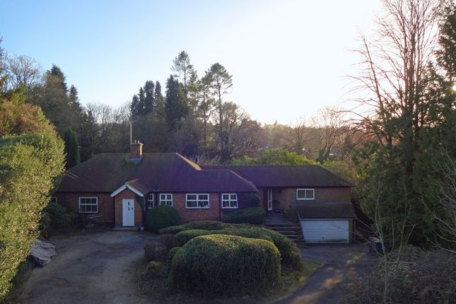 Thumbnail Detached bungalow to rent in Hale House Lane, Churt, Farnham