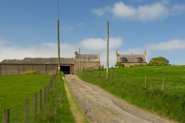 Thumbnail Farm for sale in Longhaven, Peterhead