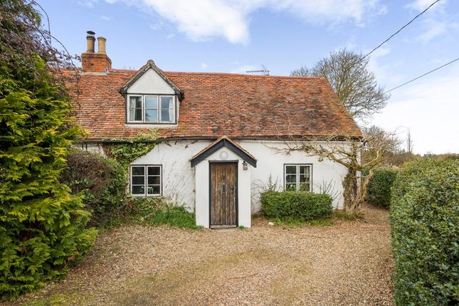 Thumbnail Semi-detached house for sale in Boxted, Colchester, Essex