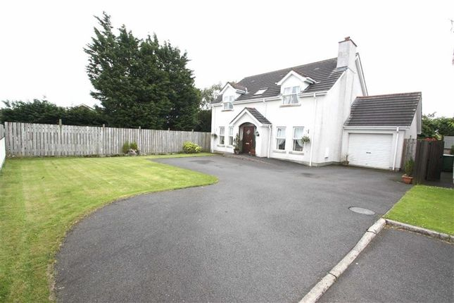 Thumbnail Detached house for sale in Glen Valley, Annahilt, Down