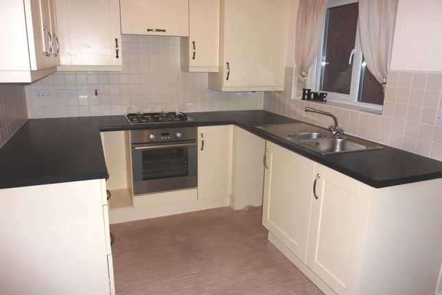 Thumbnail Detached house to rent in Penruddock Drive, Coventry