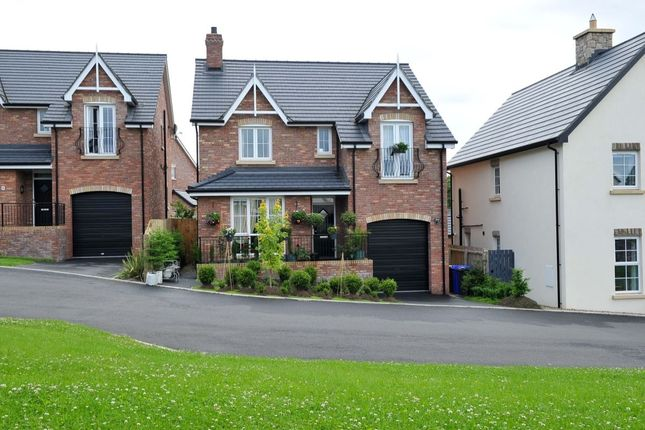 Thumbnail Detached house for sale in Tullynagardy Brae, Newtownards