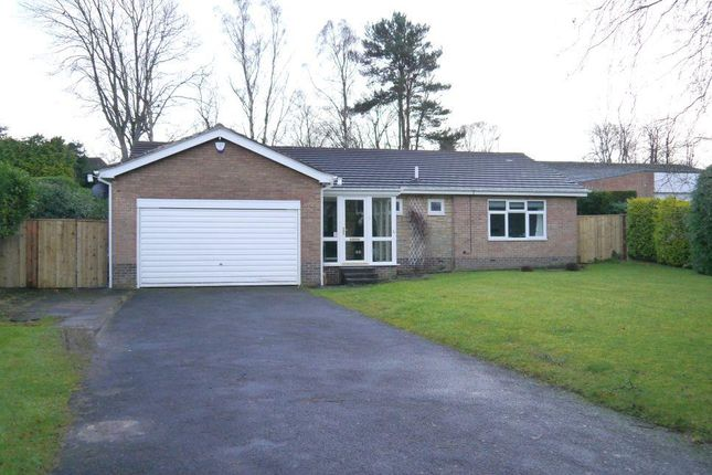 Thumbnail Detached bungalow for sale in Larchlea South, Ponteland, Newcastle Upon Tyne