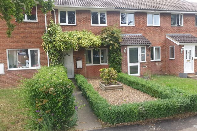 Thumbnail Property to rent in Carroll Close, Newport Pagnell