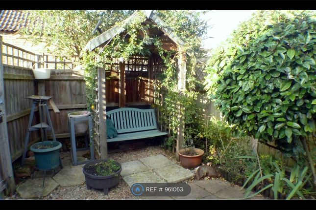 Thumbnail Semi-detached house to rent in Bohemond Street, Ely