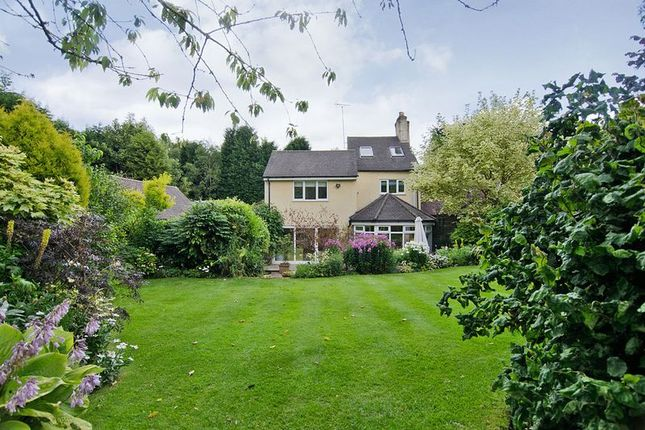 Thumbnail Detached house for sale in Stafford Brook Road, Birches Valley, Rugeley