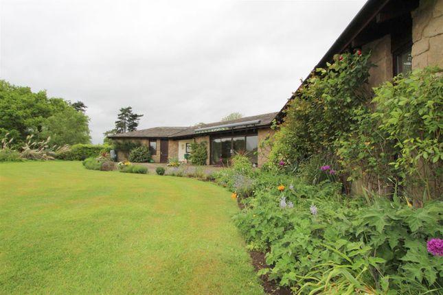 Thumbnail Detached bungalow to rent in Makeney Road, Holbrook, Belper