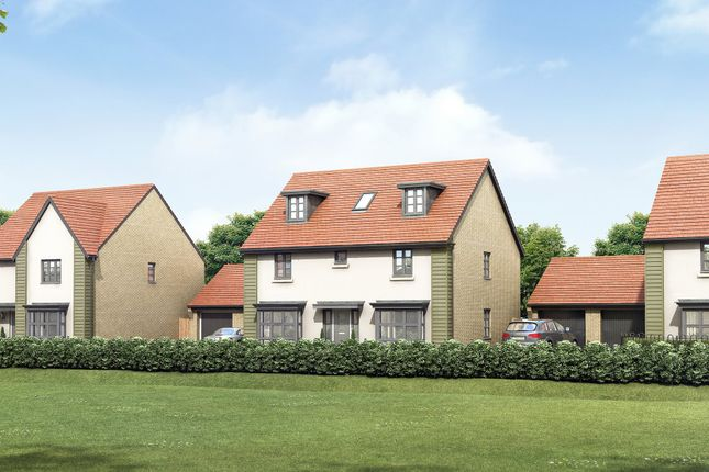 "Thumbnail Detached house for sale in ""Buckingham"" at Bearscroft Lane, London Road, Godmanchester, Huntingdon"