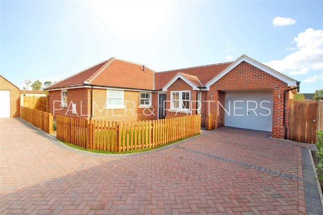Thumbnail Bungalow for sale in Nayland Road, Mile End, Colchester
