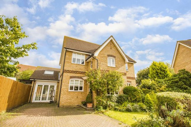 Thumbnail Detached house for sale in Ash Walk, Brandon Groves, South Ockendon