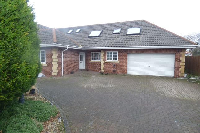Thumbnail Detached house for sale in Woodhorn Court, Ashington