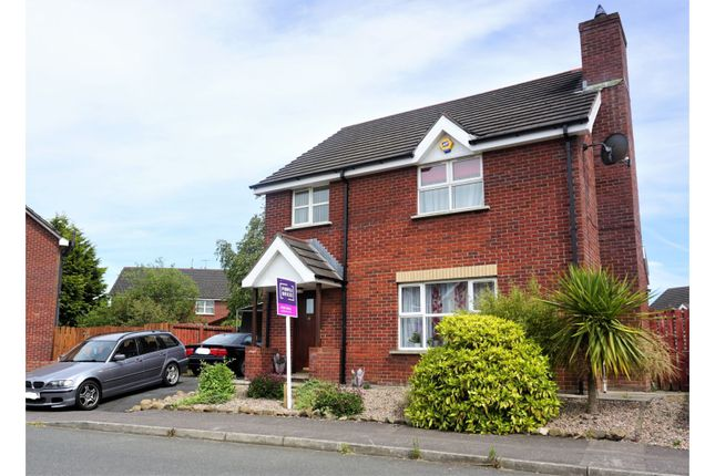 Thumbnail Detached house for sale in Twinem Court, Craigavon