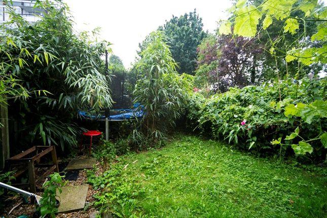 Garden of Maitland Park Road, Chalk Farm NW3
