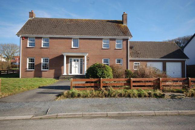 Thumbnail Detached house for sale in Rhydyfelin, Aberystwyth