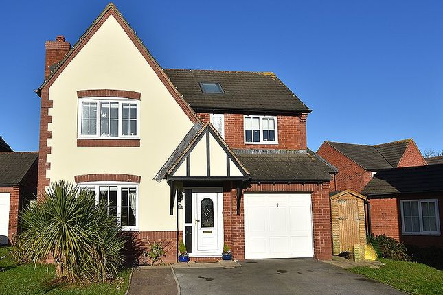 Thumbnail Detached house to rent in Edgbaston Mead, Exeter