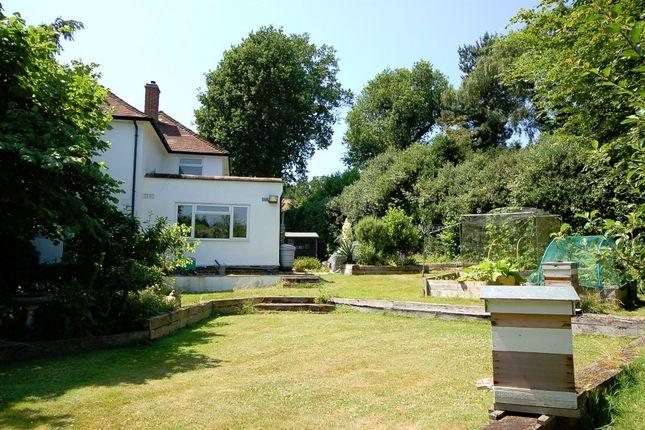 Rear Garden of Higgs Lane, Bagshot GU19