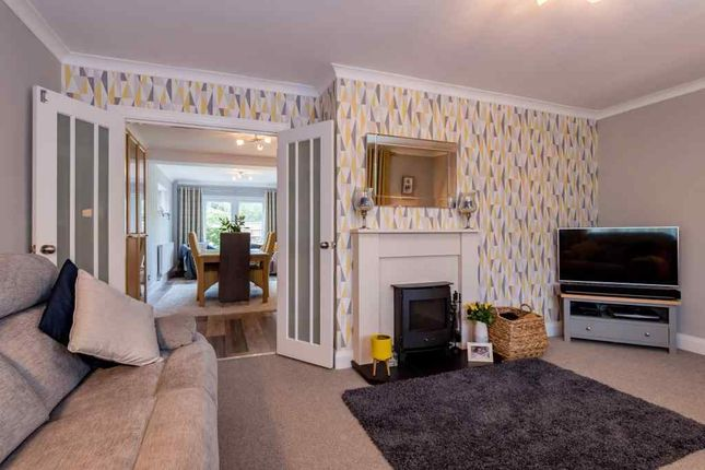 Thumbnail Detached house to rent in Grafton Avenue, Peterborough