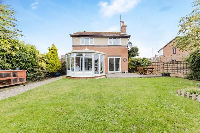 Thumbnail Detached house for sale in Pelham Road, Worthing