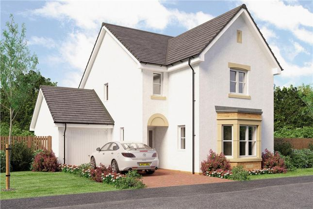 """Thumbnail Detached house for sale in """"Esk"""" at Broomhouse Crescent, Uddingston, Glasgow"""