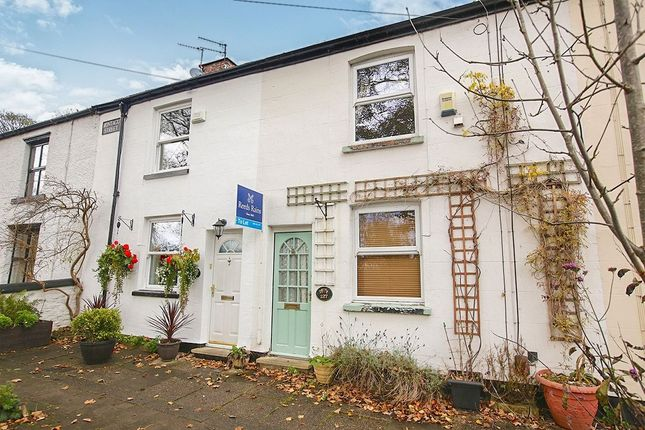 Thumbnail Terraced house to rent in Montagu Street, Compstall, Stockport