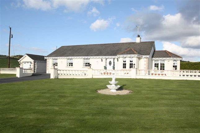 4 bed detached bungalow for sale in Carnreagh Road, Castlwellan, Down