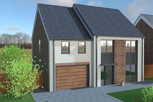 Thumbnail Detached house for sale in Maple Gardens, Drayton Road, Milton