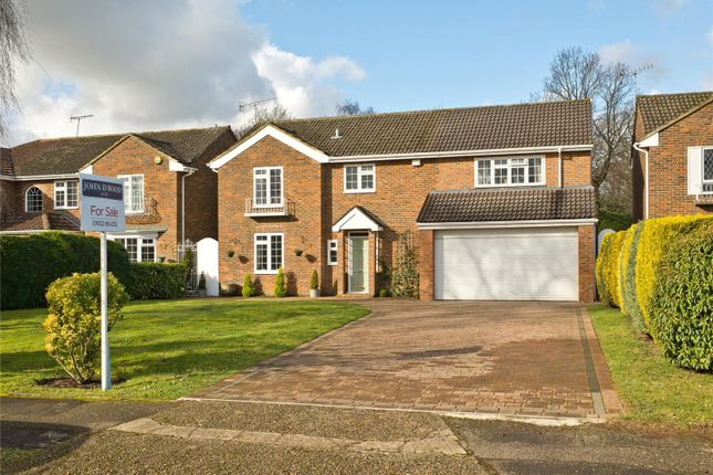 Thumbnail Detached house for sale in Somerville Road, Cobham, Surrey