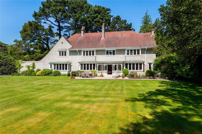 Thumbnail Detached house for sale in Bury Road, Branksome Park