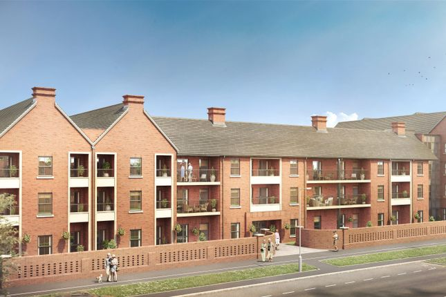 Thumbnail Property to rent in Butt Road, Colchester