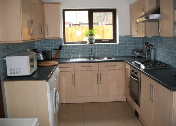 Thumbnail Detached house to rent in Campion Way, Thetford