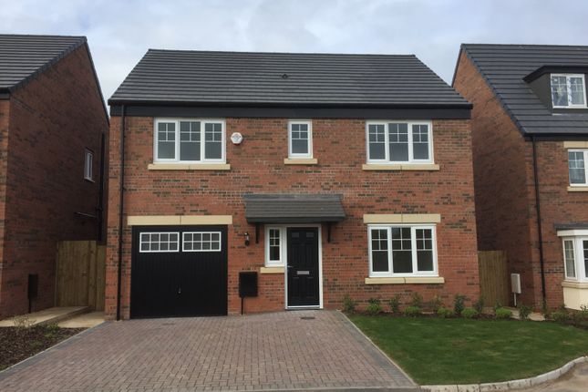 """Thumbnail Detached house for sale in """"The Strand"""" at Grange Drive, Carlisle"""