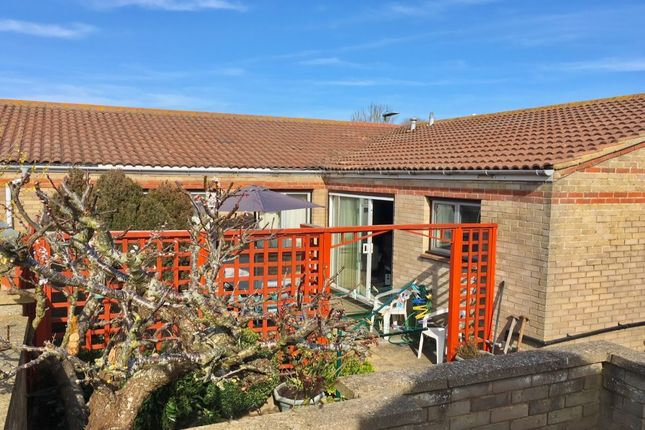 Thumbnail Bungalow to rent in Wade Close, Eastbourne