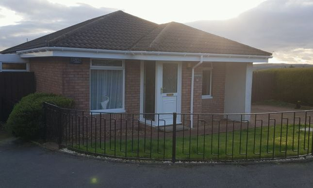 Thumbnail Bungalow for sale in Broomhill Crescent, Alexandria