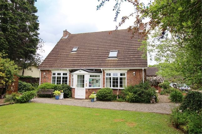 Thumbnail Detached house for sale in Hazeldean Guest House, Orton Grange, Carlisle, Cumbria
