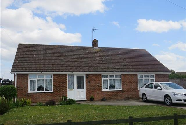 Thumbnail Bungalow to rent in Nightingale Close, Scratby, Great Yarmouth
