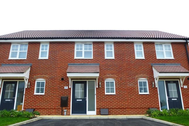 Thumbnail Property to rent in Swallow Drive, Wymondham