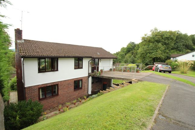 Thumbnail Detached house for sale in Grove Park Drive, Newport