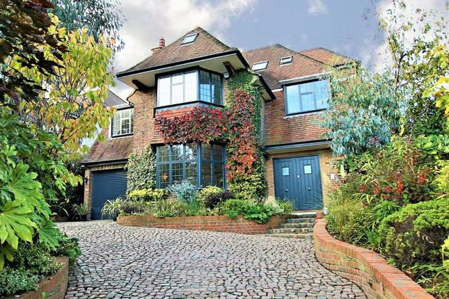Thumbnail Detached house for sale in Oakleigh Avenue, Oakleigh Park, London