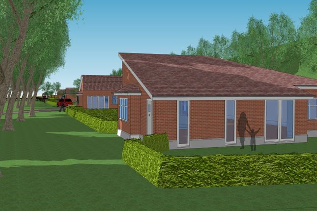 Thumbnail Terraced bungalow for sale in Maple Tree Close, Felixstowe